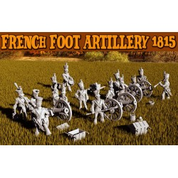 French Foot Artillery+...
